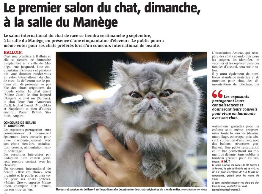 20170831 salon du chat VdN revue de presse